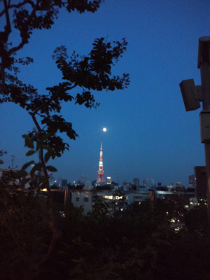 110615tokyo_tower_mini.jpg