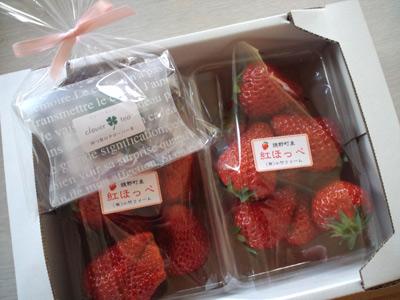 120313ichigo.jpg