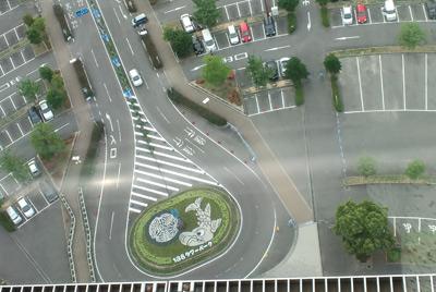 120604syachihoko.jpg